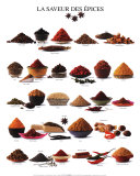Spices Art Poster