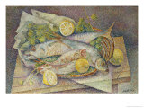 Still Life of Fish, Giclee Print