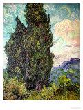 Cyress Trees, Art Print, Vincent van Gogh