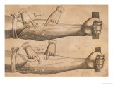Discovery of the Circulation of Blood, 1628 Giclee Print, William Harvey