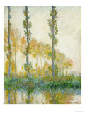 Three Trees, Autumn, Art Print, Claude Monet
