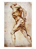 Anatomical Study, Rubens