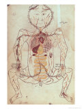Anatomical Diagram of The Human Circulatory and Digestive System, c. 1425-50 Giclee Print