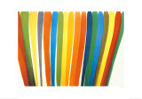 While, 1960, Art Print, Morris Louis