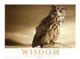Wisdom Motivation Poster
