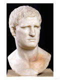Bust of Agrippa, Photographic Print