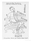 Acupuncture the Meridian of the Loins, Giclee Print