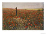 In Flander's Field Art Print