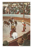 Bull Fight, Mexico, Art Print