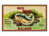 Pacific Salmon Art Print