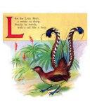 Lyre Bird poster