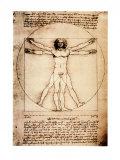 Vitruvian Man, 1492, Art Print