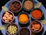 Spices of Nutmeg, Tumeric, Chilli, Cinnamon, Cloves, Star Anise and Cumin, Indonesia, Photographic Print