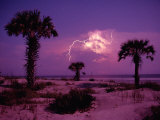 Lightning Illuminates the Purple Sky over Cumberland Island National Seashore, Photographic Print