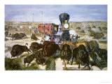 Train Passengers Shooting Buffalo For Sport, c.1870, Giclee Print