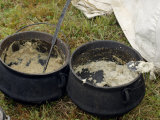 Grits Cooked in Kettles to Feed Continental Army Reenactors, Yorktown Battlefield, Virginia, Giclee Print
