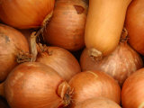 Close-Up of Fresh and Delicious Onions and Squash, Photographic Print