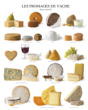 Cow Cheeses Art Poster