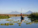 Fisherman, Agua and Pacaya Volcanoes in the Background, Monterrico, Pacific Coast, Guatemala, Photographic Print