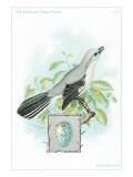 Mockingbird with an Egg Inset Art Print