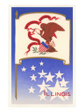 Illinois Flag Art Print