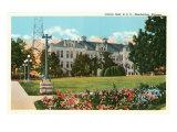 Kansas State University, Manhattan, Art Print