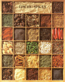 Epices / Spices Art Poster