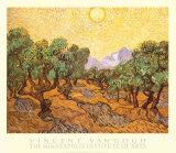 Olive Trees, Art Print