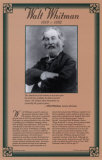 Walt Whitman- American Authors Biographical Timeline Fine Art Print