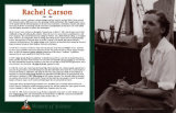 Women of Science - Rachel Carson Wall Poster