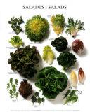 Salads, Art Print