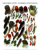 Summer Vegetables Art Poster