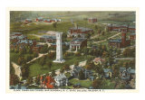 North Carolina State College Art Print