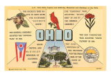 Ohio's Flag, Bird, Capitol Art Print