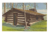 Continental Army Hut, Valley Forge, Pennsylvania Art Print