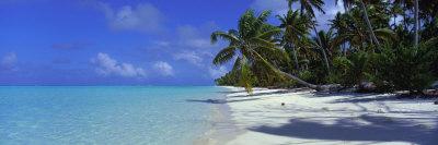 Tetiaroa Atoll, French Polynesia, Tahiti Photographic Print