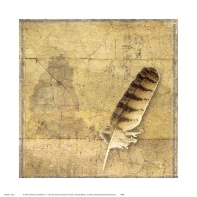 Owl Feather Art Print