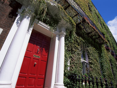 Red Door and Ivy Covered Building, St. Stephens Green, Dublin, Eire (Republic of Ireland) Photographic Print
