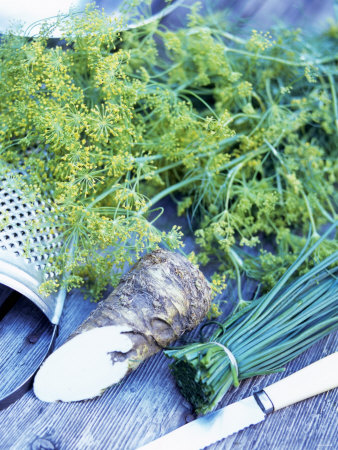 Dill, Horseradish and Chives