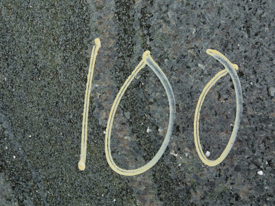 Number 100 Written in Chalk on Rough Pavement Photographic Print