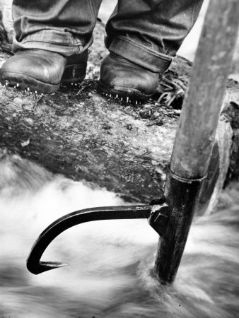 Log Driver's Feet Using a Peavey, to Control Lumber Floating Down River Headed for Paper Mill 写真プリント : マーガレット・バーク=ホワイト