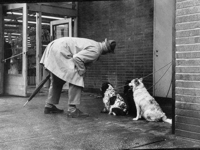 French Actor Jacques Tati Talking to a Couple of Dogs Premium Photographic Print by Yale Joel