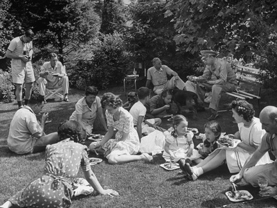 Suburban Family and Guests Having Picnic Supper in Backyard Photographic Print
