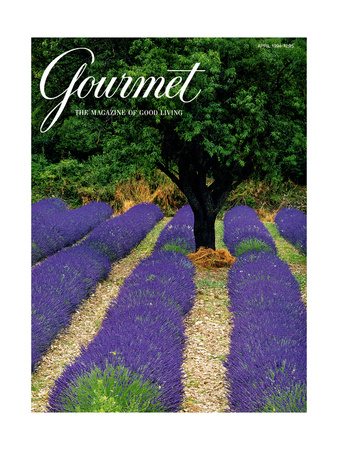 Gourmet Cover - April 1994 Giclee Print by Julian Nieman