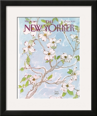 The New Yorker Cover - May 16, 1983 Framed Giclee Print by Joseph Farris