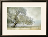 Tree in Field of Flowers Framed Photographic Print by Mia Friedrich