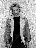 Musician Sting Premium Photographic Print