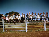 Children of Rancher Tom Hall Lined up on Fence Reproduction photographique sur papier de qualité par Loomis Dean