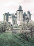 Chateaux of Loire Valley, France Premium Photographic Print by Nat Farbman