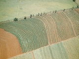 Aerial of Cultivated Farmland in Brazil Photographic Print by Dmitri Kessel